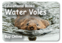 ad water vole book